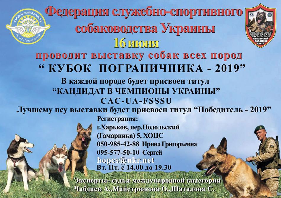 Повседневный корм Роял Канин (Royal Canin) для кошек и котят